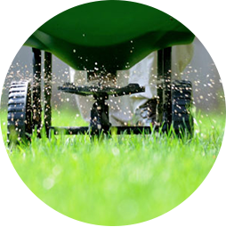 Naturally Green's lawn care program includes fertilization.