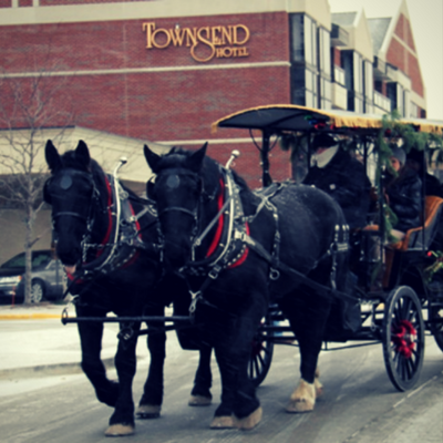 Horse and Carriage rides!