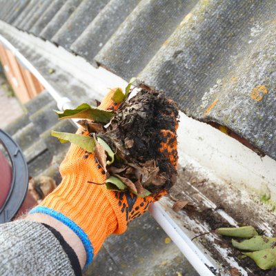 Cleaning out your gutters is essential to your fall pest prevention here in Hartford County, CT.