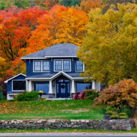 Best Fall Trees in Connecticut