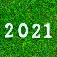 Lawn Care Goals For 2021